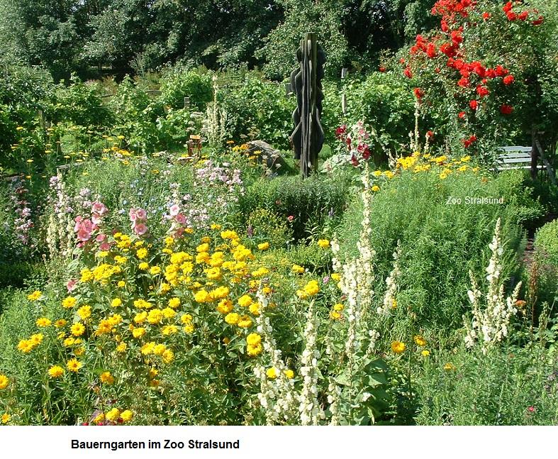 Bauerngarten.jpg