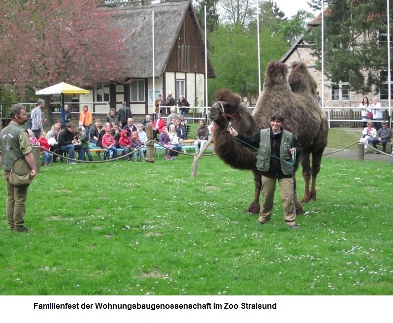Familienfest-WBG-Volkswerft.jpg