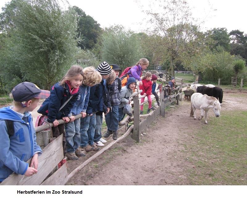 Herbstferien-im-Zoo.jpg