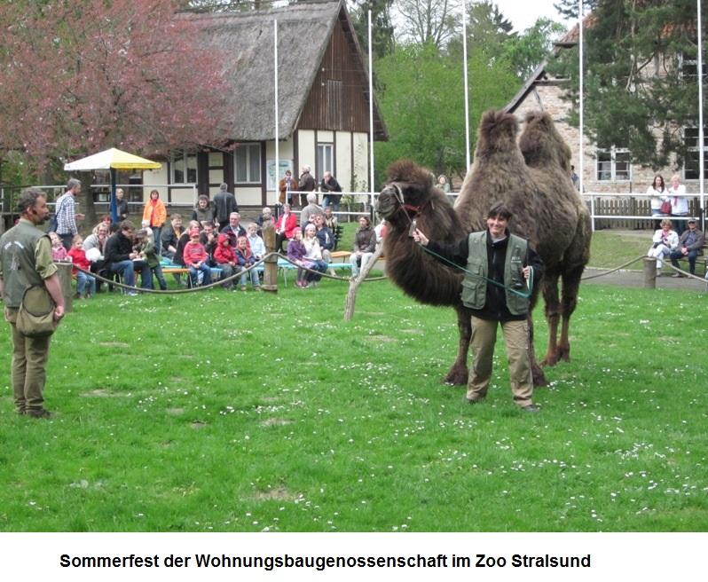 Sommerfest-WBG-Volkswerft.jpg